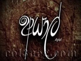 Ayal Episode 8