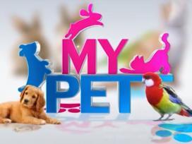 My Pet 25-09-2020