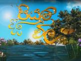 Piyum Vila 23-06-2020