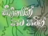 Sihinayak Pata Patin (18) - 25-05-2017
